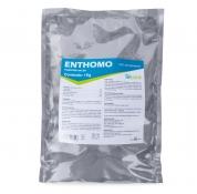 Enthomo